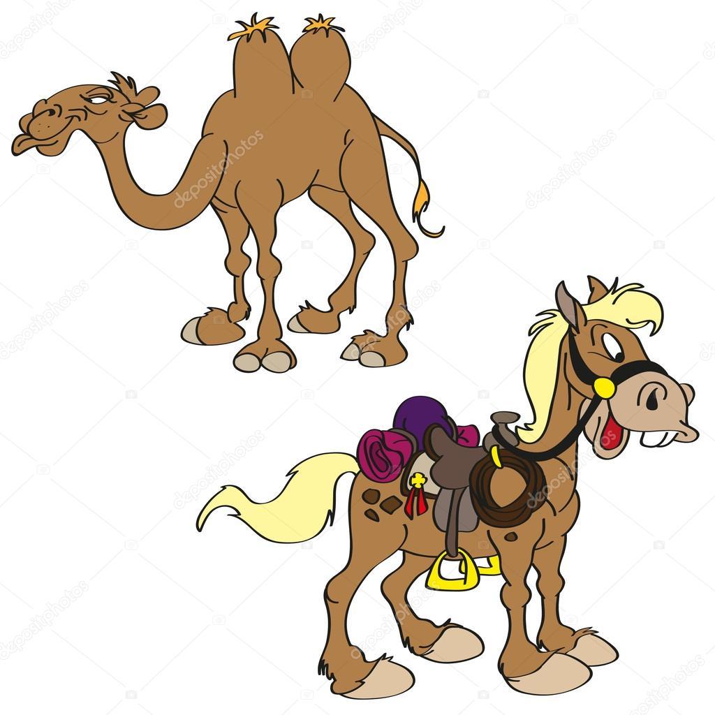 cartoon horse and camel u2014 stock vector desanns 25882741
