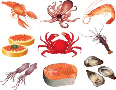 Seafood photo-realistic set