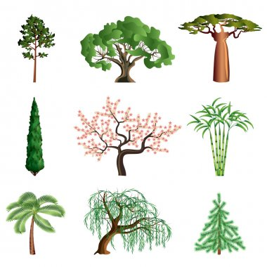 Popular trees isolated on white colorful collection stock vector