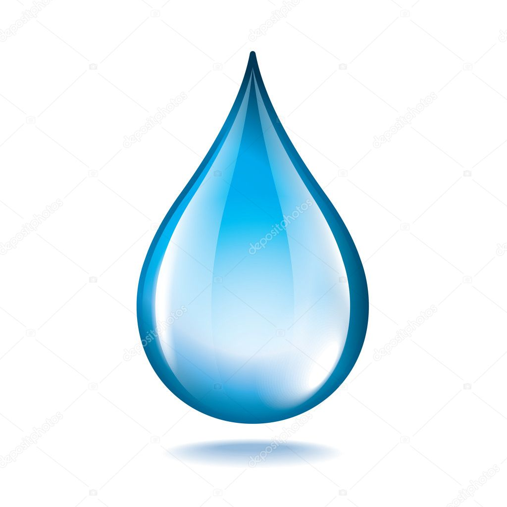 Water drop isolated on white vector