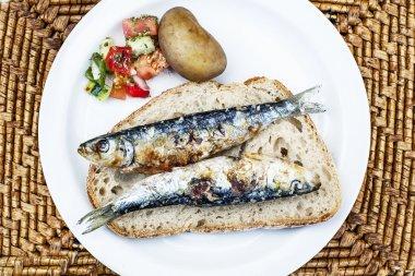 Sardine sandwich, sardine on plate