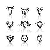 Fotografie Animals icons. Vector format