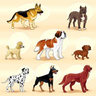 Groups of dog. Vector illustration clip art vector