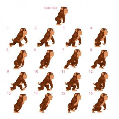 Animation of gorilla walking.