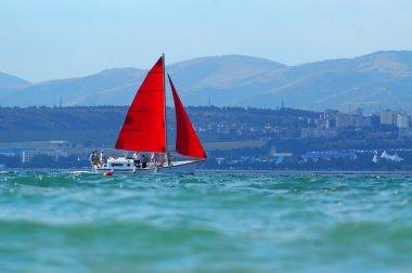 Scarlet sails. Black Sea. Gelendzhik
