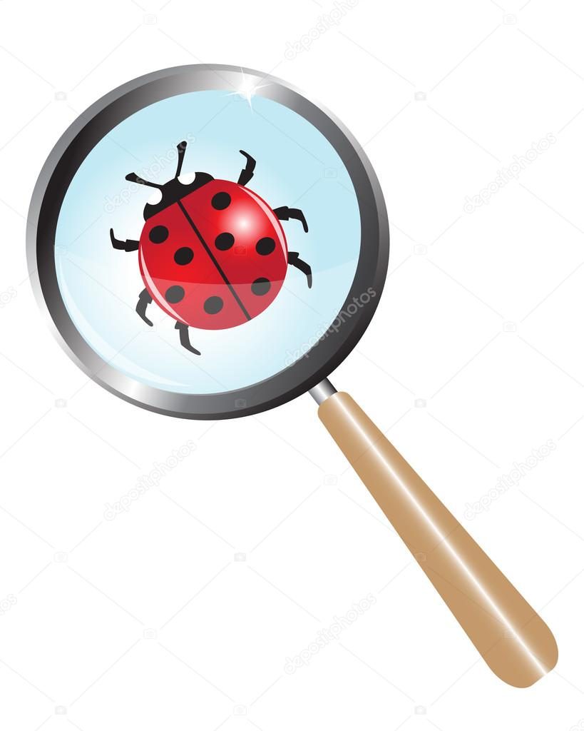Ladybug under a magnifying glass