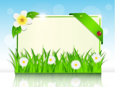 Sheet of paper in the green grass and flowers