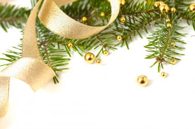 Cristmas seasonal background with spruce and golden beads isolat