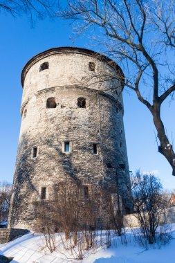 Winter view of fortress towers Tallinn. Estonia