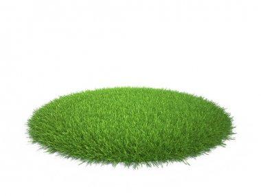 Green grassy piece of land