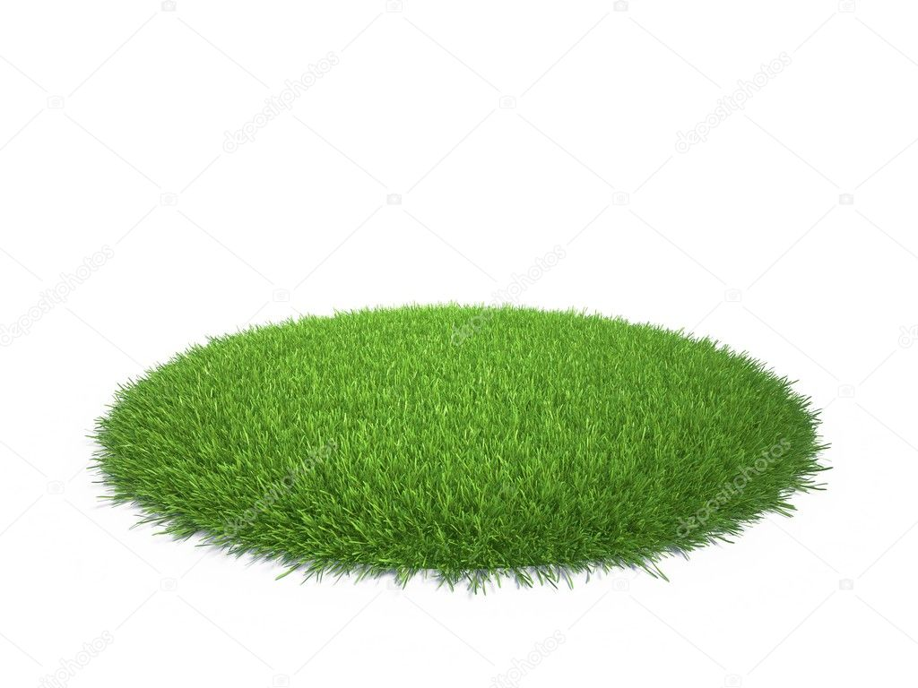 Green grassy piece of land