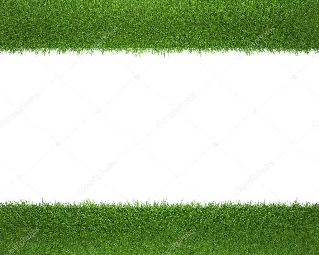 Grass frame on a white background for photos