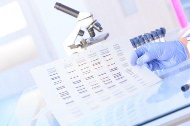 Analizing DNA