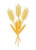 Photo Grain icon on white background