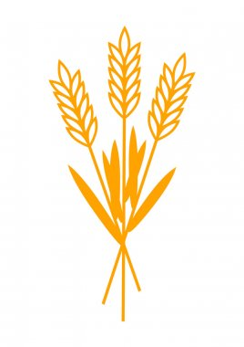 Grain icon on white background