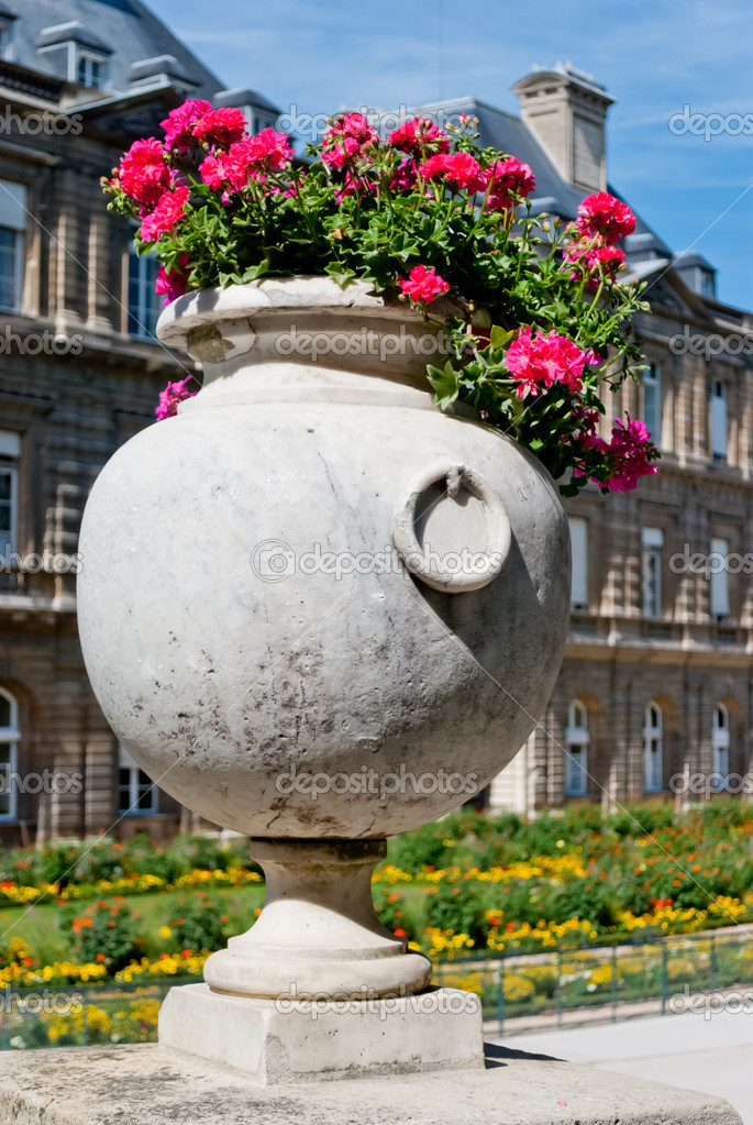 Luxembourg gardens ornamental flowers, Paris