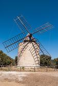 Fotografie Windmühle des Glücks, Insel von Porquerolles, Frankreich