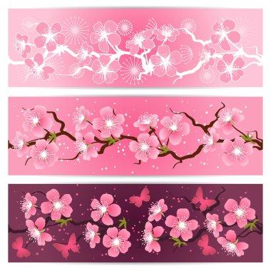 """Картина, постер, плакат, фотообои """"Цветы сакуры баннер набор."""", артикул 18618117"""
