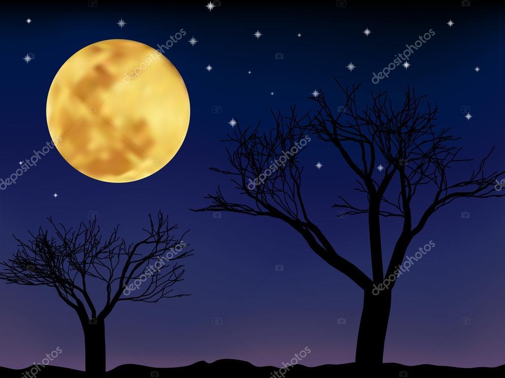 Fotos Paisajes Nocturnos Paisaje Nocturno De Vector Vector De