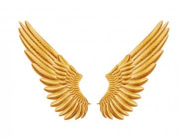 Golden wings stock vector