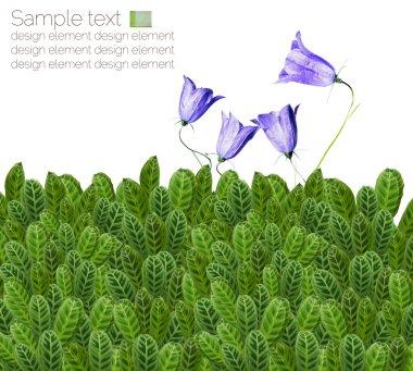 Lovely floral design elements