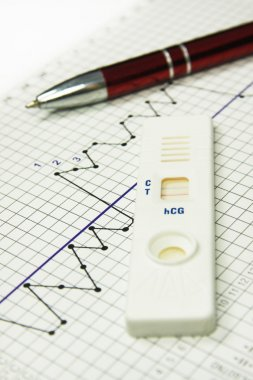 Fertility chart. Pregnancy test. Naprotechnology
