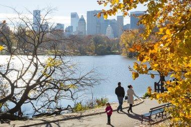 NEW YORK, US - NOVEMBER 23: Manhattan skyline with Central Park