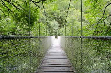 Suspension bridge, rope bridge.