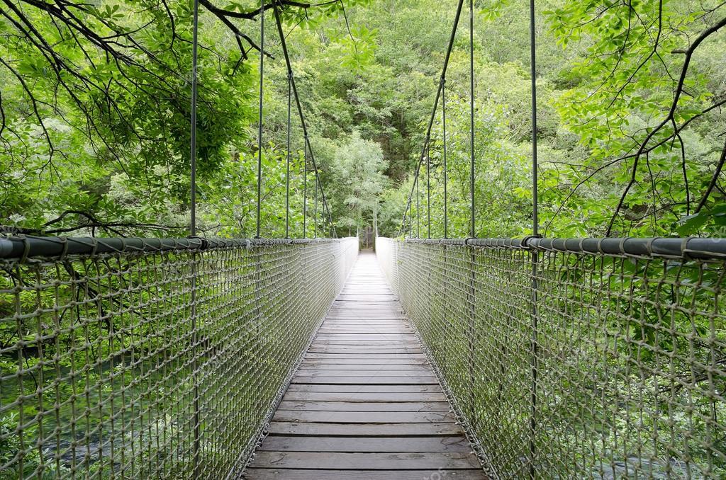Suspension bridge, rope bridge.