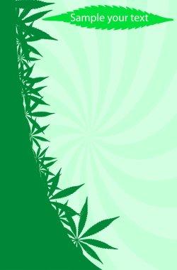 Cannabis frame