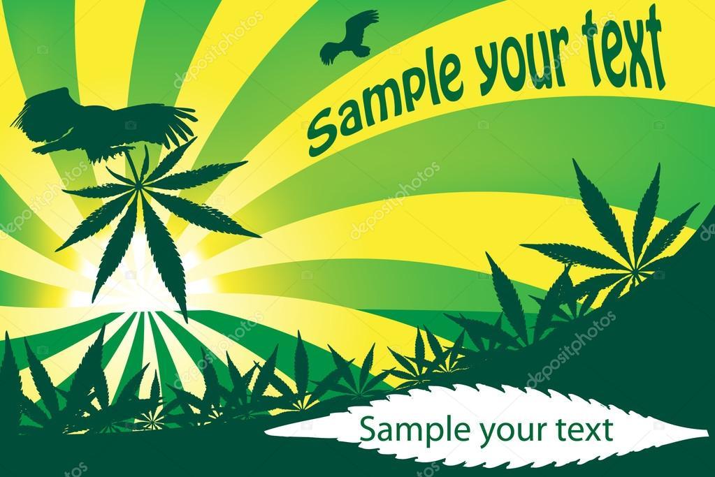 Cadre De Cannabis Ce Qui Peut Etre Utilise Comme Une Carte Visite Illustration Vectorielle Vecteur Par 1001 Holiday