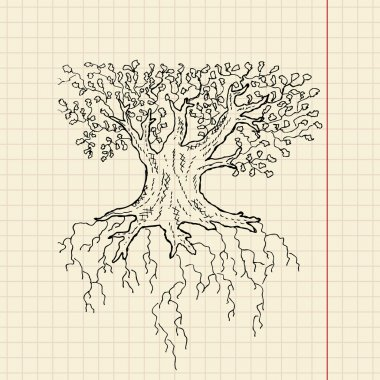 Oak tree sketch on school paper