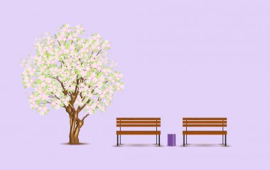 Traditional japanese tree and benches