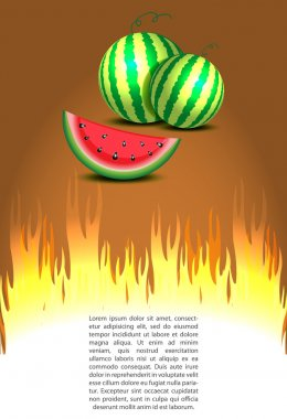 Watermelon discount sale with hot prices