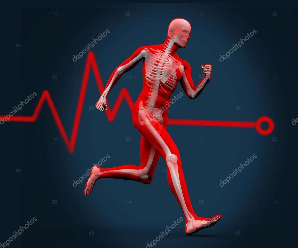 digitale Körper gegen eine Herzfrequenz-Linie laufen — Stockfoto ...