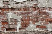 stará cihlová zeď