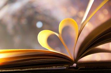 Book heart concept.
