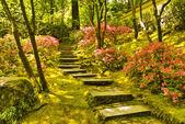 Rustikale Treppe