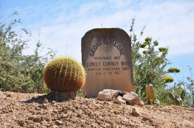 Wild west grave with a cactus