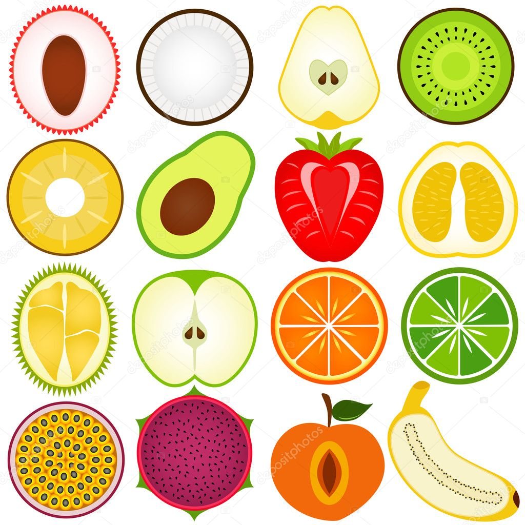 A vector collection of Fresh fruit cut in half isolated on white clipart vector