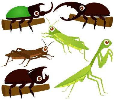 Grasshopper, Beetle, Praying Mantis