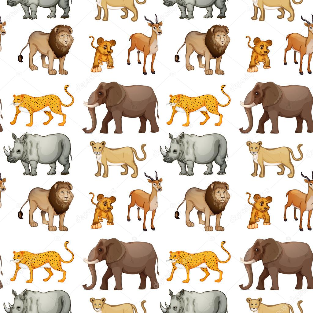 animals various illustration vector collection depositphotos background interactimages isolated huge