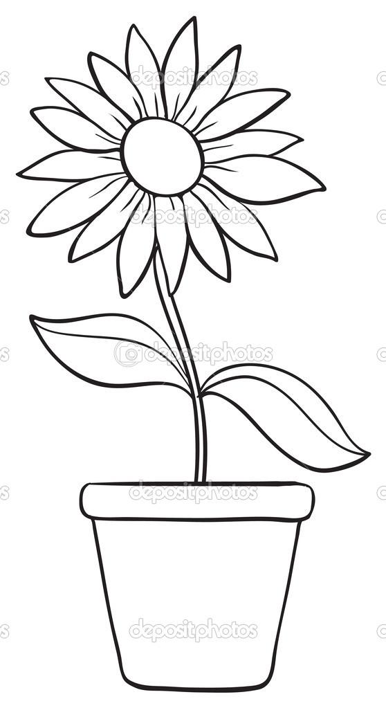 一朵花和锅素描 图库矢量图像 169 Interactimages 13994938 Simple Flower Pot Draw Color It