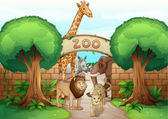 zoo a zvířata