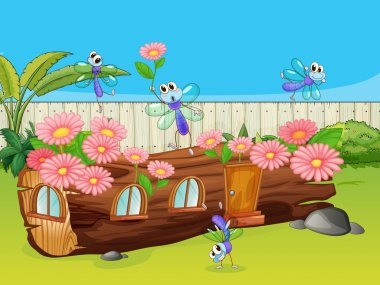 Dragonflies and wood house