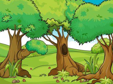 Illustration of big old trees stock vector