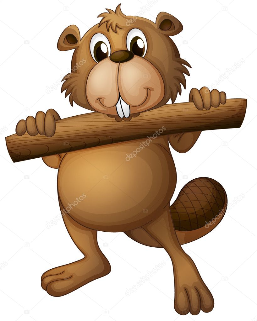 a beaver u2014 stock vector interactimages 18916209