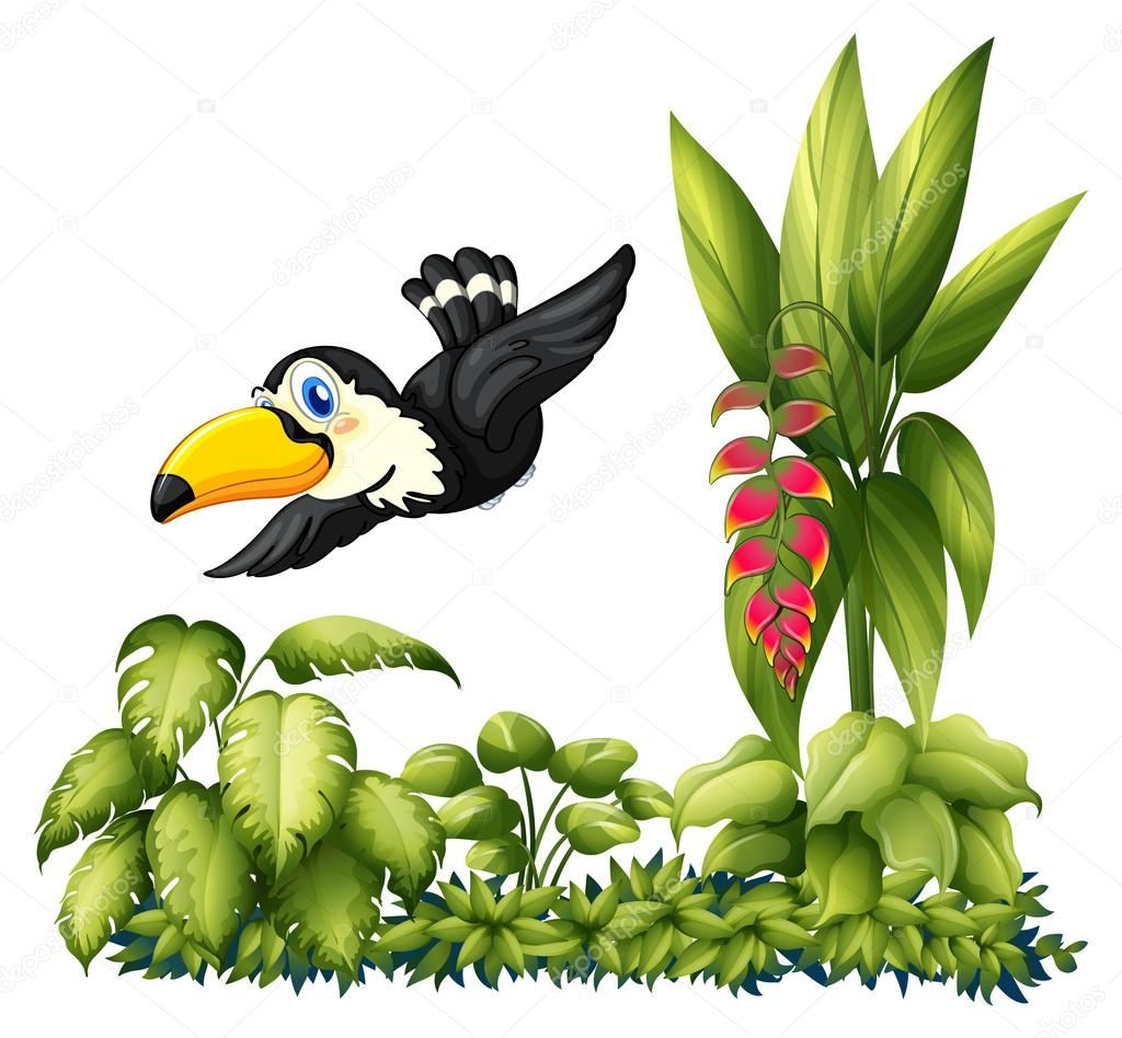 A flying bird in the garden
