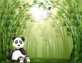 Fotografia un orso panda e foresta di bambù
