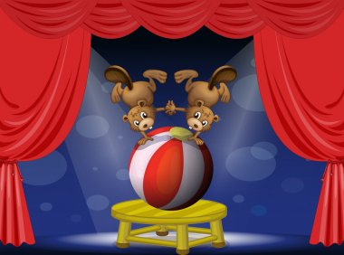 A circus show with the beavers